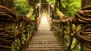 The 1,000-year-old Kazurabashi vine bridge, Samurai, Japan, The Travel Show (Credit: Credit: stockstudioX/iStock)