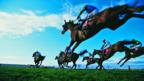 Horse racing: Derby dreams