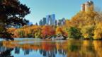 Central Park (Thinkstock)