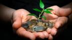 Should one profit from doing good? (Credit: Adam Korzeniewski/Alamy)