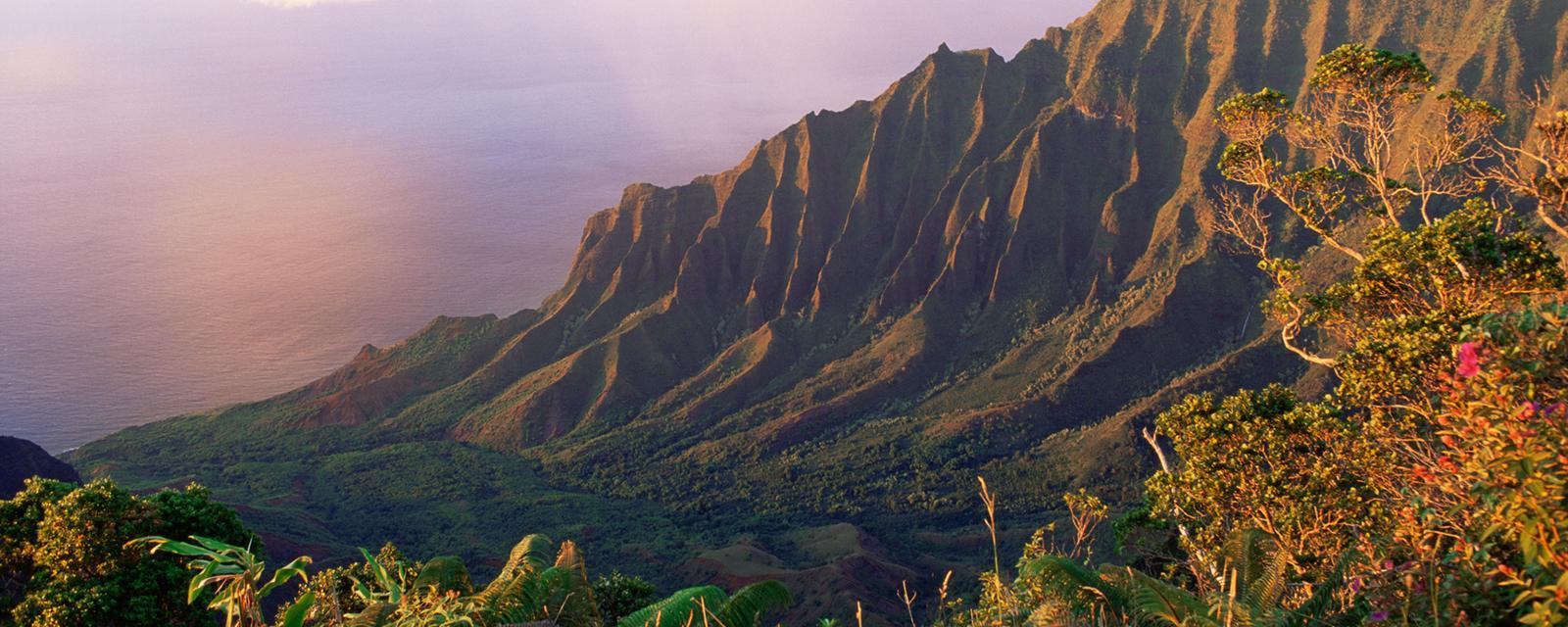 Earth - Hawaii: The islands where evolution ran riot