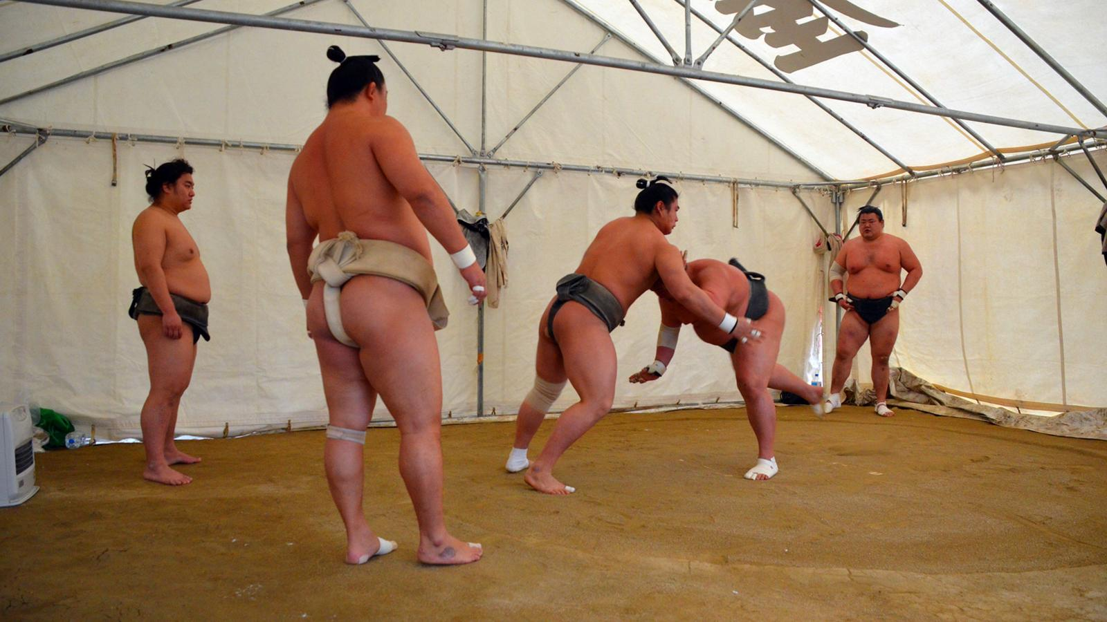 Сумоисты голые