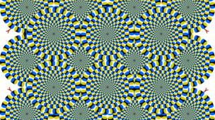 Fish can see this illusion