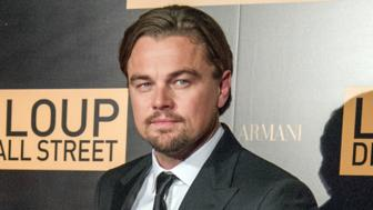 DiCaprio car runs on star power