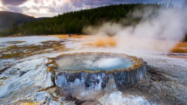 Bacteria live in hot springs in Yellowstone (Credit: Floris van Breugel/naturepl.com)