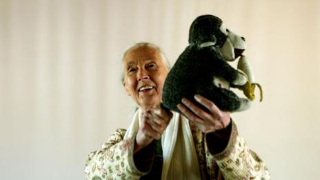 "Goodall with her stuffed toy ""Mr H"" (Getty Images)"