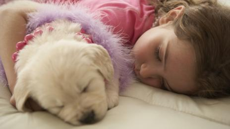A new puppy or kitten can make your heart melt. (Thinkstock)
