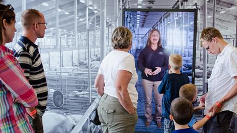 The tour at The Pig Adventure features hi-tech presentations (Fair Oaks Farm)