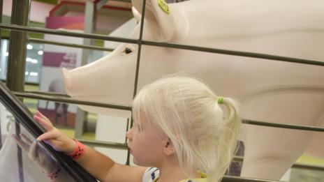 A young girl learns about farming at The Pig Adventure visitor centre (Fair Oaks Farm)