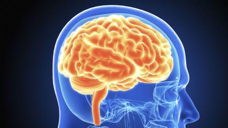 Brain (Thinkstock)