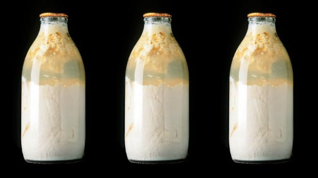 Curdled milk in bottles (Copyright: SPL)