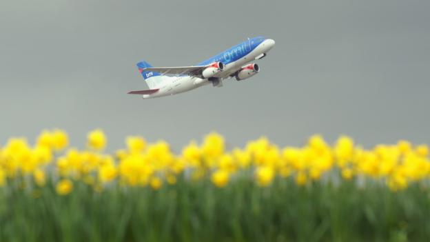 Plane taking off over a field of yellow flowers (Copyright: Getty Images)