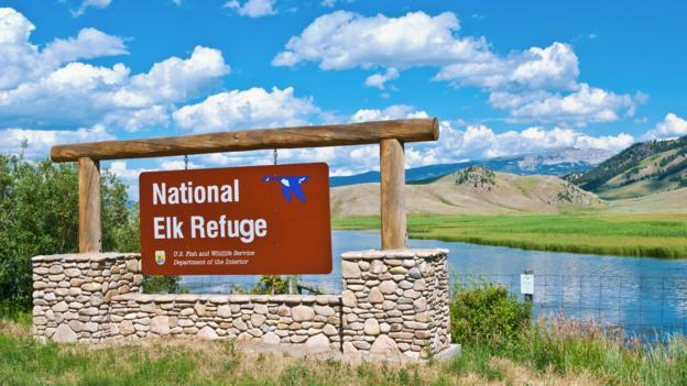 Elk sanctuary (Credit: Danita Delimont/Getty)