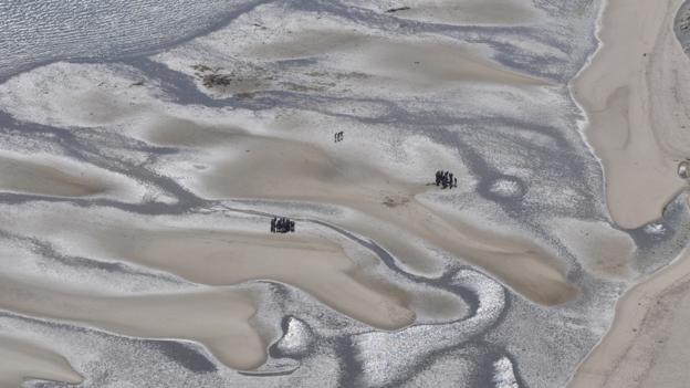 The Wadden Sea (Credit: Holger Widera)