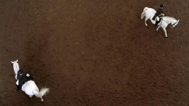 The Spanish Riding School (Credit: Joe Klamar/AFP/Getty)