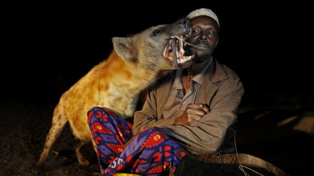 Bbc Travel Pt 3 Taming Wild Hyenas Outside Harar