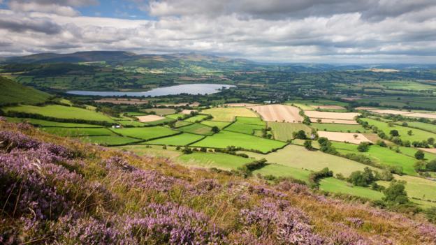 Rolling countryside (Credit: Adam Burton/Getty)