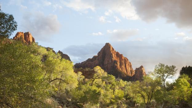 A lofty lookout (Credit: Philip Lee Harvey)
