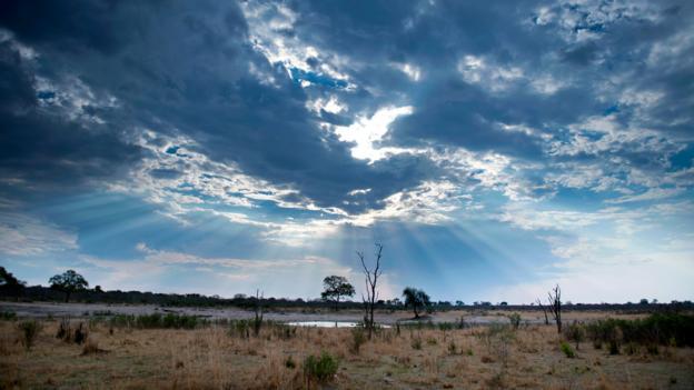Hwange National Park (Credit: Martin Bureau/AFP/Getty)