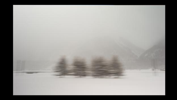Winter starkness (Credit: Photo: Rolf Sachs)