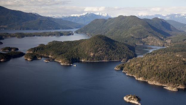 Nelson Island (Credit: Dean vant Schip/Getty)
