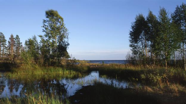 Lake Ladoga (Credit: Universal Images Group)