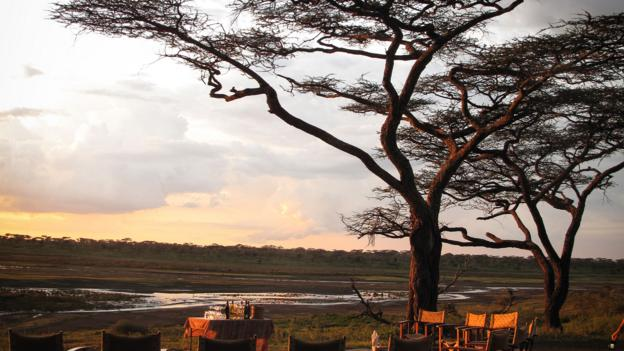 The sun sets over the Serengeti (Credit: Colleen Clark)