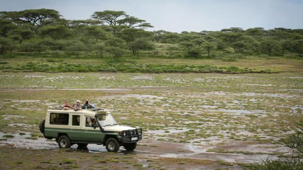 Tracking leopards in the southern Serengeti (Credit: Colleen Clark)