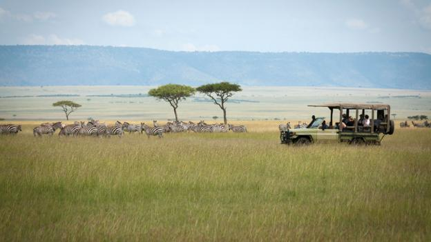 Driving through the long grasses in the northern Serengeti (Credit: Colleen Clark)