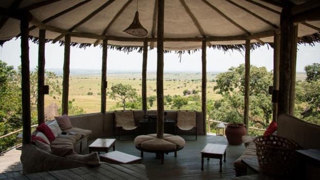 Lamai Serengeti (Credit: Colleen Clark)