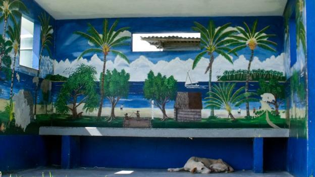 A stray dog sleeps at a bus stop on Majuro (Credit: Sameena Jarosz)