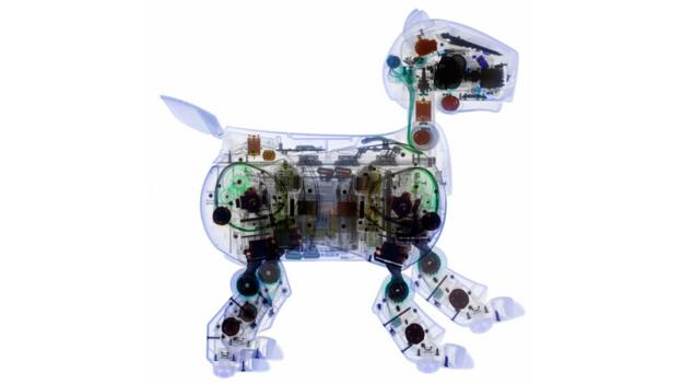 AIBO (Credit: Science Photo Library)