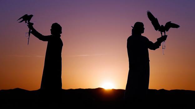 Emirati men train falcons in the Liwa desert (Credit: Karim Sahib/AFP/Getty)