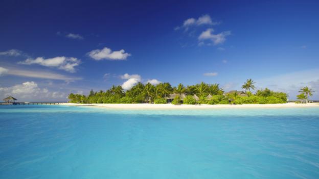 Tropical idyll