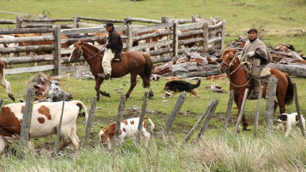 Horsemen wearing the traditional black beret and sheepskin chaps (Credit: Gabi Mocatta)