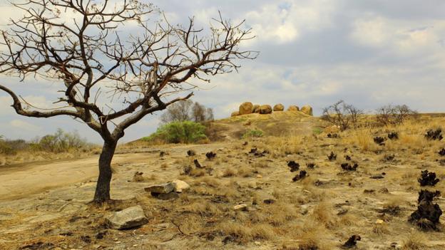 Matopos National Park (Credit: Gosiqa/Thinkstock)