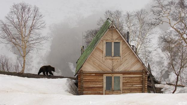 Hoping for an invite inside? (Credit: Igor Shpilenok)