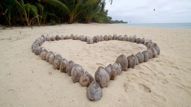 Coconut love (Credit: Marty Melville/AFP/GettyImages)