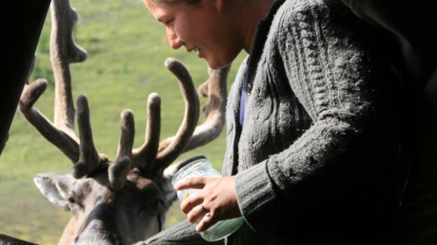 Zaya feeding salt to reindeer (Credit: Anna Kaminski)
