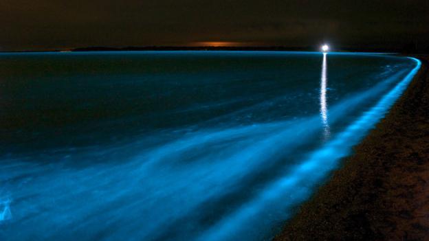 Waves that glow (Credit: Stocktrek Images/Getty)