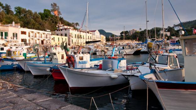 Ischia harbour (Credit: Amanda Ruggeri)