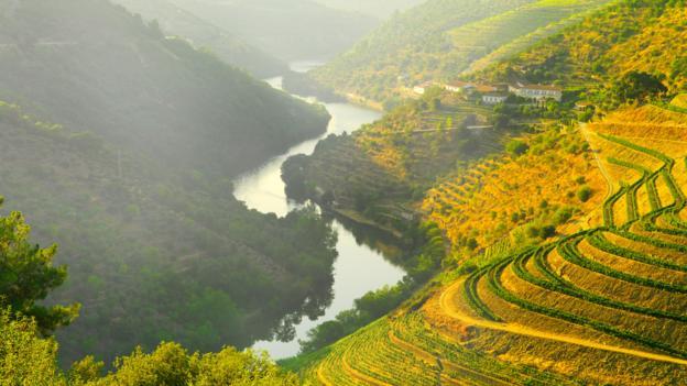 The Douro River Valley (Credit: Shaun Egan/Getty)