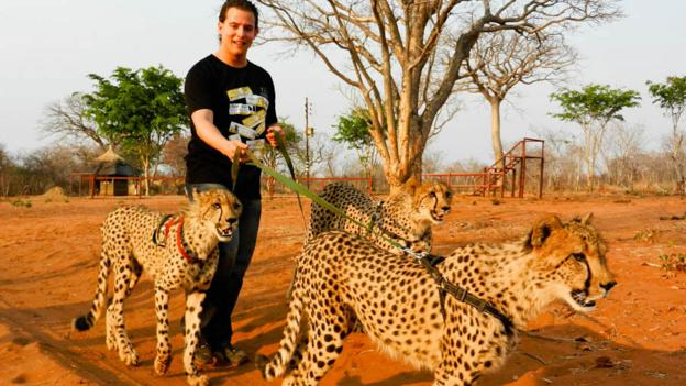 Walking with cheetahs in Livingston, Zambia (Credit: Marcello Arrambide)
