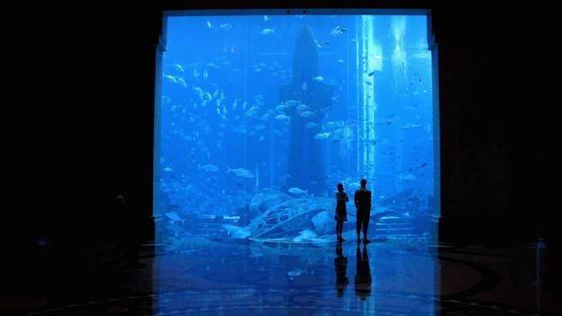 Aquarium at Dubai's Atlantis Hotel (Credit: Clive Brunskill/Getty)