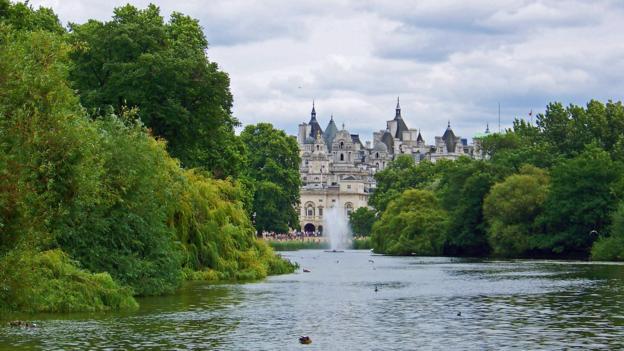 Solitude in London's St James's Park (Credit: Amanda Ruggeri)
