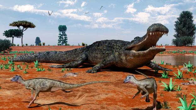 BBC - Earth - Ten giant animals that are long since dead