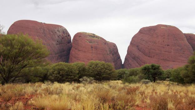 The heads of Kata Tjuta crowd together like sleepy children (Credit: Credit: Georgia Rickard)