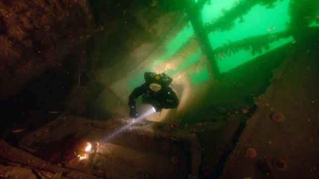 Below the surface (Credit: Credit: Gareth Lock/imagesoflife.co.uk)