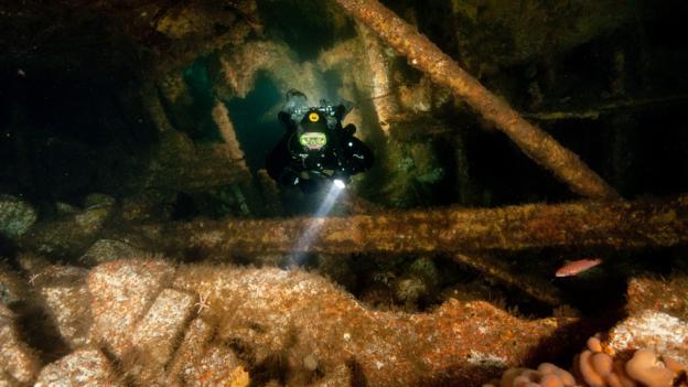 Sunken steamship (Credit: Credit: Gareth Lock/Imagesoflife.co.uk)