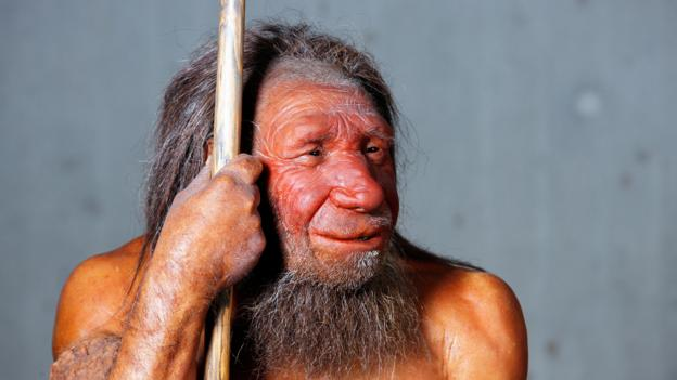 Neanderthals were our close relatives (Credit: Jochen Tack/Alamy Stock Photo)